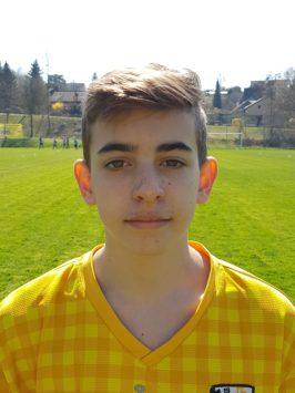 Alexandros Daremas